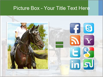 Horse getting a bath PowerPoint Template - Slide 21