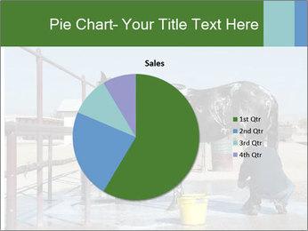 Horse getting a bath PowerPoint Templates - Slide 36