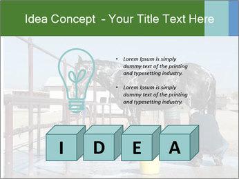 Horse getting a bath PowerPoint Templates - Slide 80