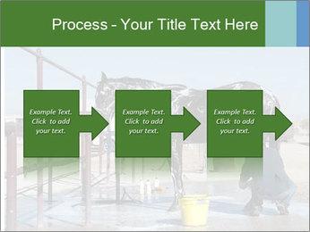 Horse getting a bath PowerPoint Templates - Slide 88