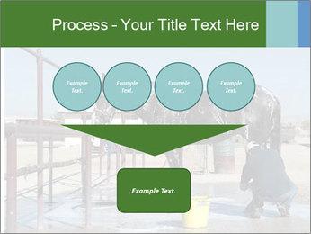 Horse getting a bath PowerPoint Templates - Slide 93