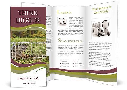 0000087829 Brochure Template