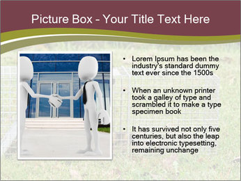 Raccoon PowerPoint Templates - Slide 13