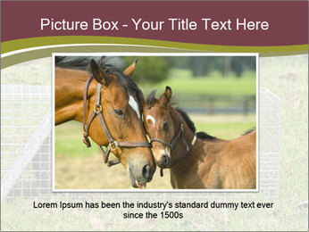 0000087829 PowerPoint Template - Slide 16