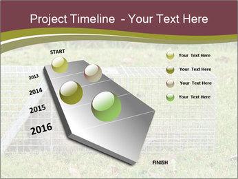 Raccoon PowerPoint Templates - Slide 26