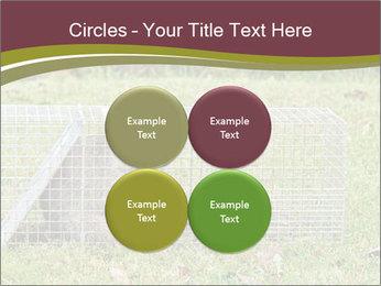 0000087829 PowerPoint Template - Slide 38