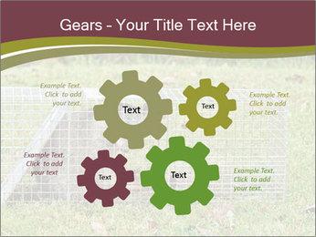 0000087829 PowerPoint Template - Slide 47
