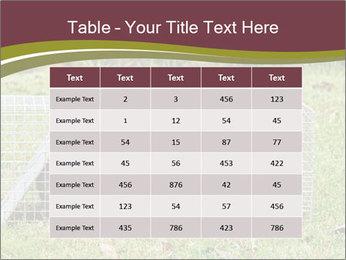 0000087829 PowerPoint Template - Slide 55