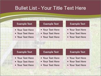 0000087829 PowerPoint Template - Slide 56