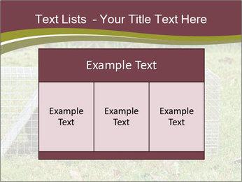 Raccoon PowerPoint Templates - Slide 59