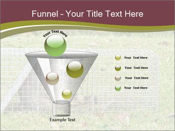0000087829 PowerPoint Template - Slide 63