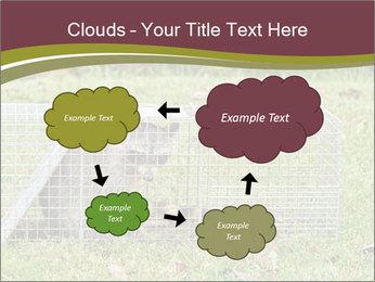 0000087829 PowerPoint Template - Slide 72