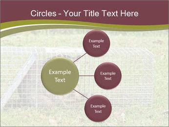 0000087829 PowerPoint Template - Slide 79