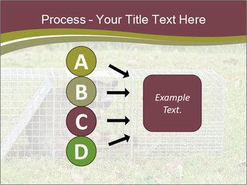 0000087829 PowerPoint Template - Slide 94