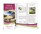 0000087837 Brochure Templates