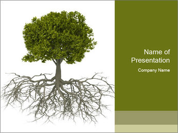 Tree with root PowerPoint Template - Slide 1