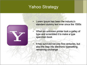 Tree with root PowerPoint Template - Slide 11