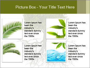 Tree with root PowerPoint Template - Slide 14
