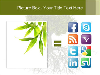Tree with root PowerPoint Template - Slide 21