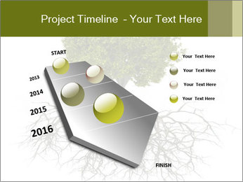 Tree with root PowerPoint Template - Slide 26