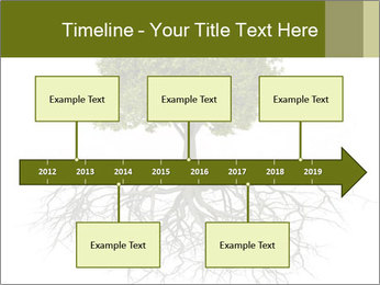 Tree with root PowerPoint Template - Slide 28
