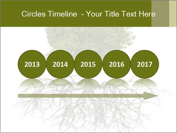 Tree with root PowerPoint Template - Slide 29