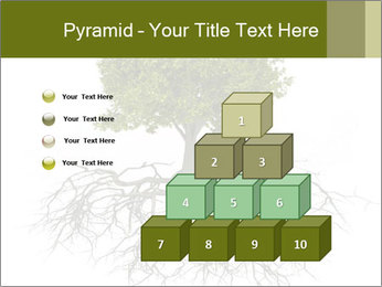 Tree with root PowerPoint Template - Slide 31
