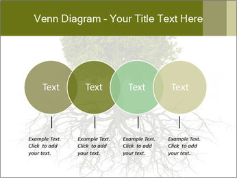 Tree with root PowerPoint Template - Slide 32