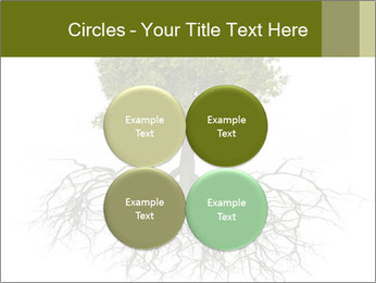 Tree with root PowerPoint Template - Slide 38