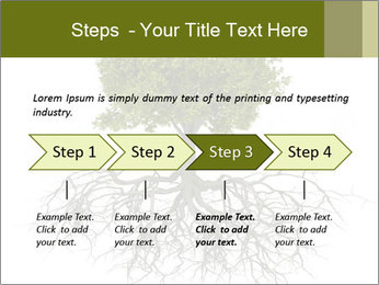 Tree with root PowerPoint Template - Slide 4