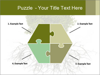 Tree with root PowerPoint Template - Slide 40