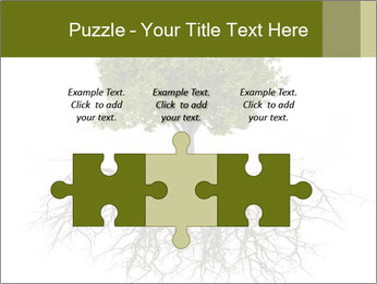 Tree with root PowerPoint Template - Slide 42
