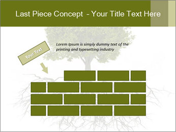 Tree with root PowerPoint Template - Slide 46