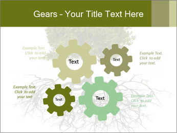 Tree with root PowerPoint Template - Slide 47