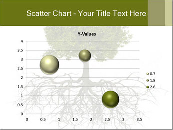 Tree with root PowerPoint Template - Slide 49