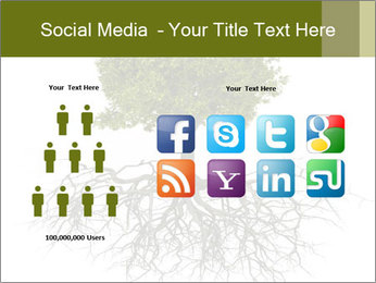 Tree with root PowerPoint Template - Slide 5