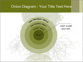 Tree with root PowerPoint Template - Slide 61