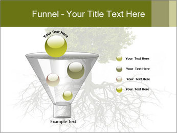 Tree with root PowerPoint Template - Slide 63