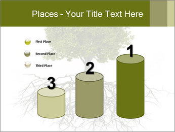 Tree with root PowerPoint Template - Slide 65