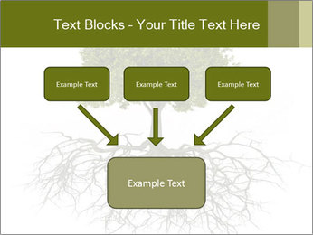 Tree with root PowerPoint Template - Slide 70