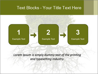Tree with root PowerPoint Template - Slide 71