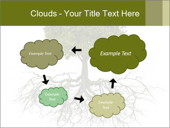 Tree with root PowerPoint Template - Slide 72