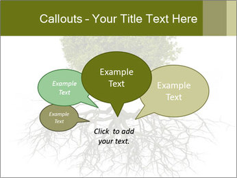 Tree with root PowerPoint Template - Slide 73
