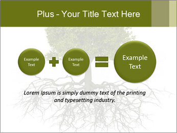 Tree with root PowerPoint Template - Slide 75