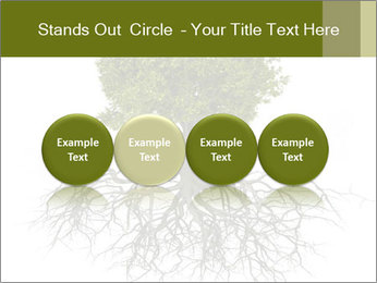 Tree with root PowerPoint Template - Slide 76