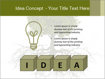 Tree with root PowerPoint Template - Slide 80