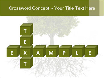 Tree with root PowerPoint Template - Slide 82