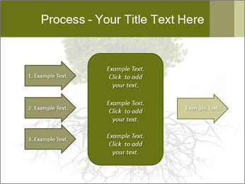 Tree with root PowerPoint Template - Slide 85