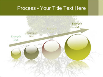 Tree with root PowerPoint Template - Slide 87