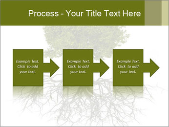 Tree with root PowerPoint Template - Slide 88